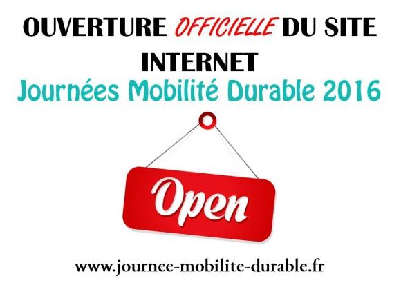 OUVERTURE SITE WEB
